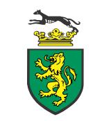 Complex security logo